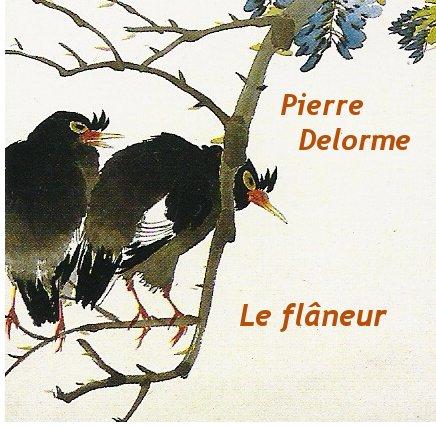 Le nouveau cd de Pierre Delorme...